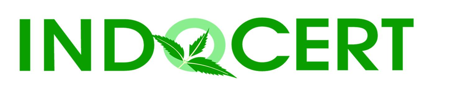 Indo logo